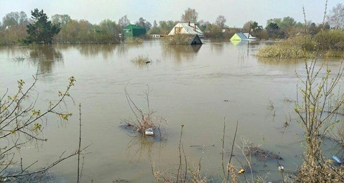 Подтопленный дачный поселок под Петропавловском