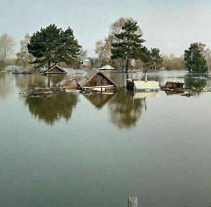 Подтопленный поселок под Петропавловском