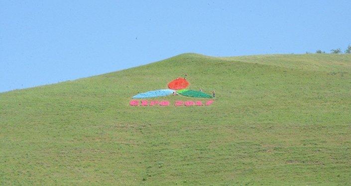 Логотип ЭКСПО установлен на перевале в ЮКО