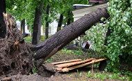Последствия урагана, архивное фото