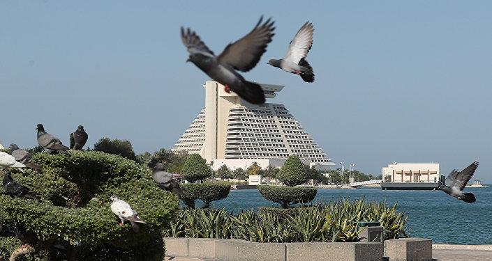 Голуби на набережной в Дохе, виды Катара, архивное фото