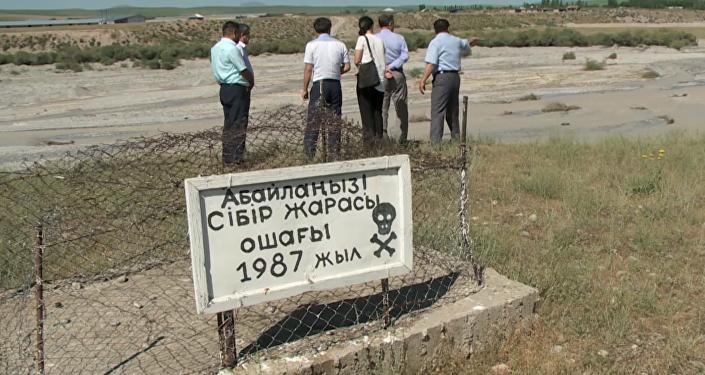 Сибироязвенный скотомогильник в Южно-Казахстанской области