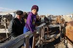 Жители села близ Аральского моря, архивное фото