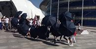 Британцы приехали с зонтами на ЭКСПО
