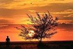 Закат в степях Сарыарки