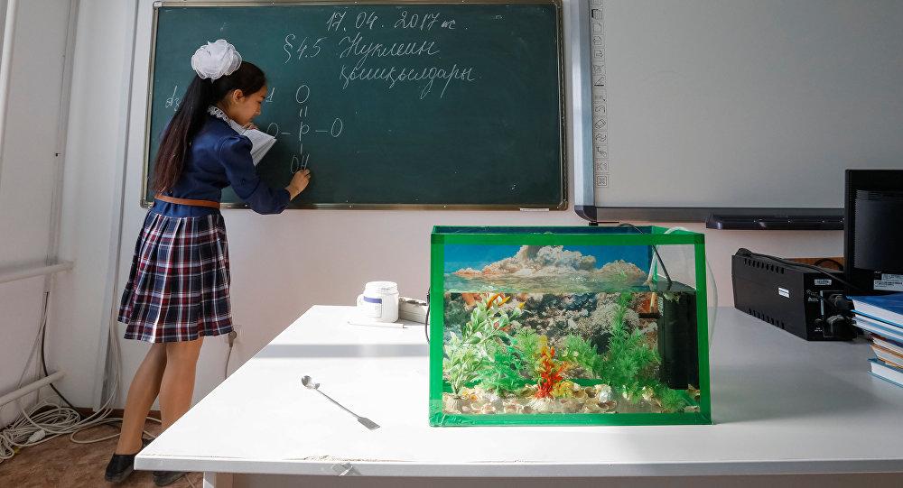 Школьники села Боген близ Аральского моря, архивное фото