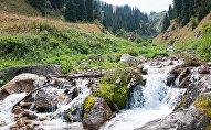 Алматы таулары, көрнекі фото