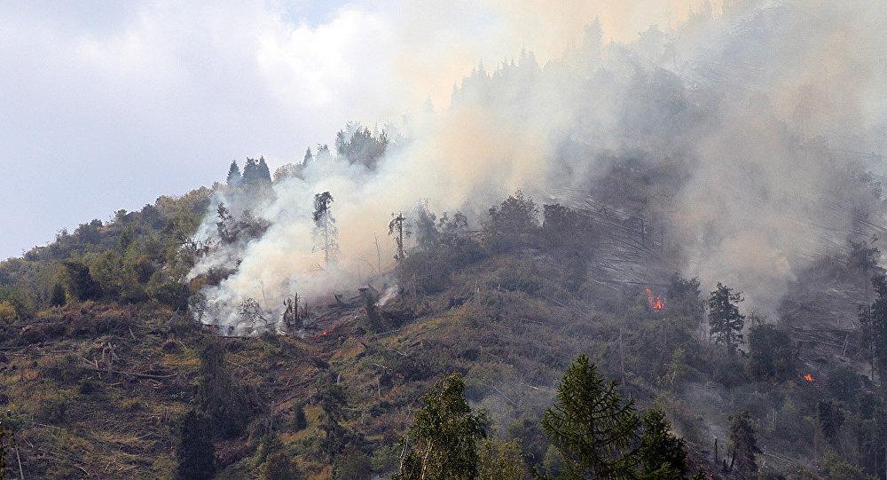 Архивное фото пожара на горе Мохнатка в Иле-Алатауском национальном парке близ Алматы