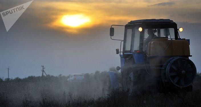 Трактор, архивное фото