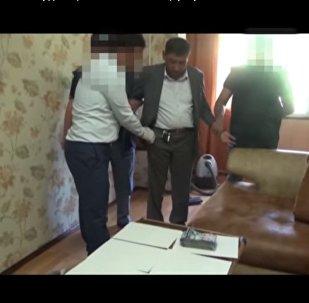 Замруководителя областного управления занятости ЮКО задержали за взятку