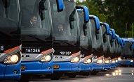 Автобусы, архивное фото