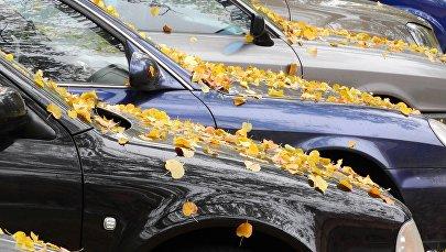 Осенние листья на капоте автомобиля