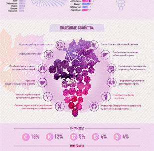 Инфографика Виноград