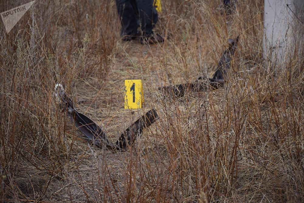 Ан-28 ұшағының құлаған жері