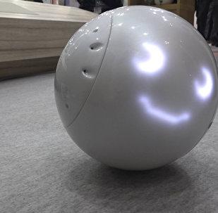 Балаларға арналған робот