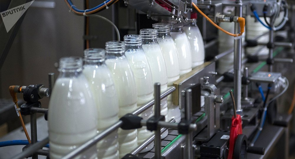 Молочный комбинат, архивное фото