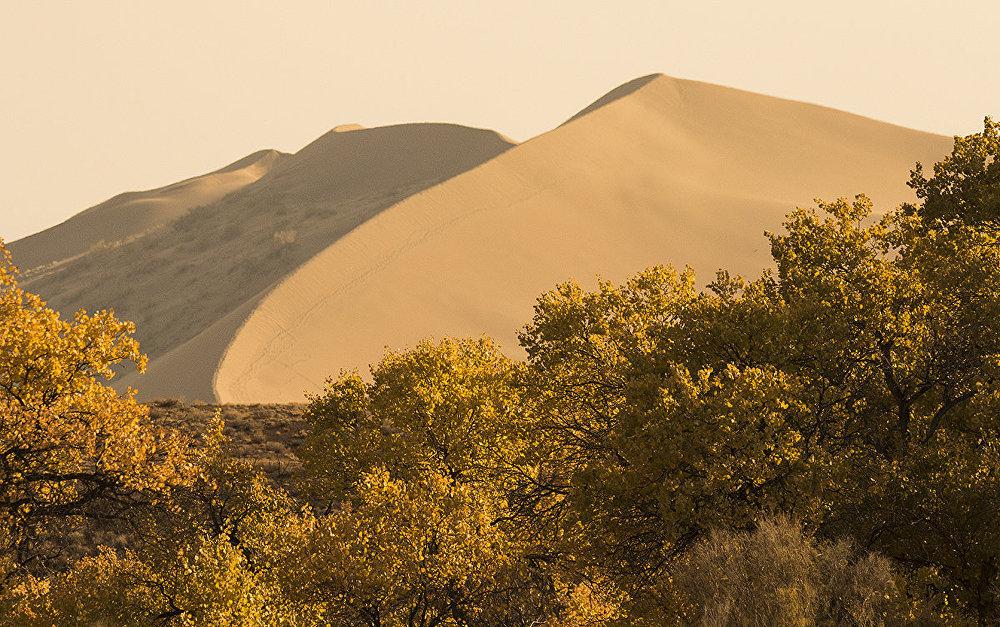 Государственный национальный природный парк Алтын-Эмель