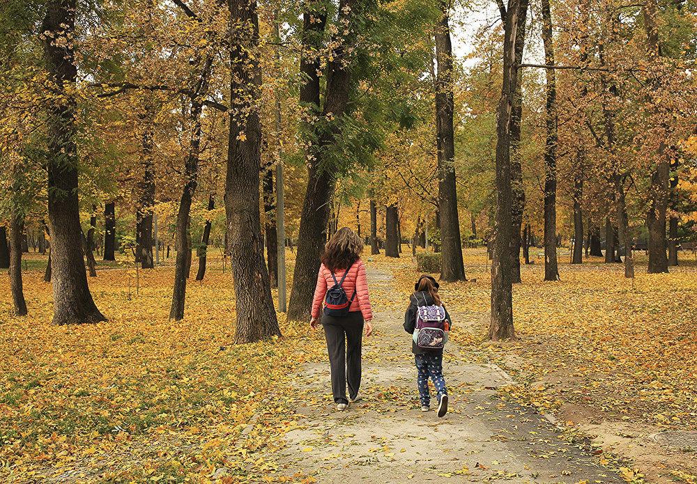 Прогноз погоды на 5 октября: казахстанцев ждут тёплые выходные