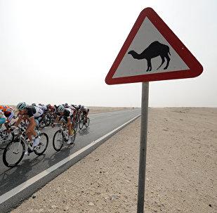 Дорожный знак в Катаре