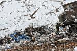 Выгрузка мусора на свалке бытовых отходов, архивное фото