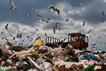Полигон твердых бытовых отходов, архивное фото