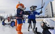 Талисманы команд КХЛ перед Матчем Звезд КХЛ в Уфе, архивное фото