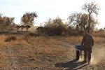 Сырдарья-Туркестанский государственный региональный природный парк в ЮКО