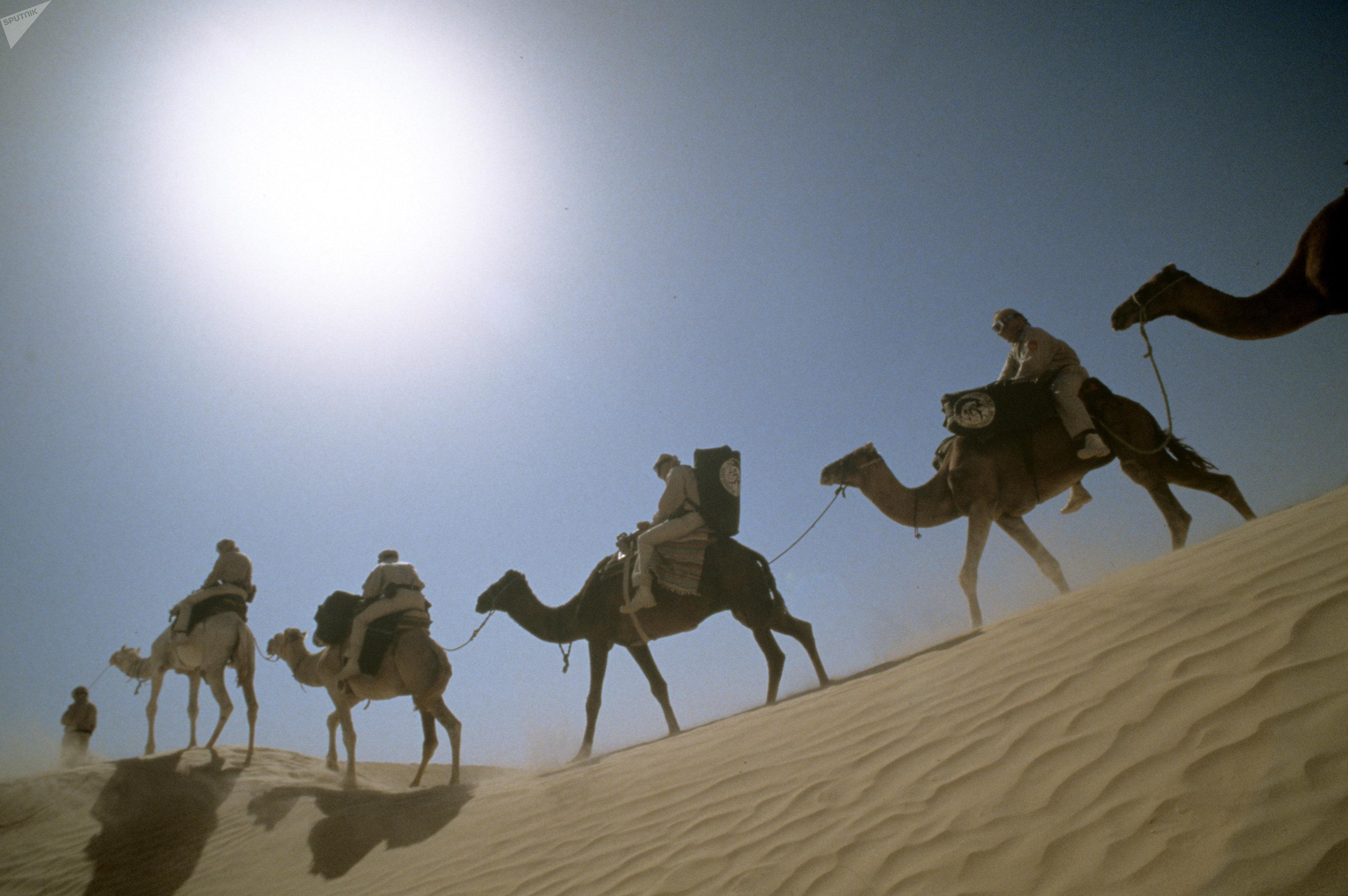 Экспедиция путешественника Яцека Палкевича в Сахару, архивное фото