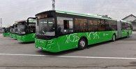 Автобусы в Алматы