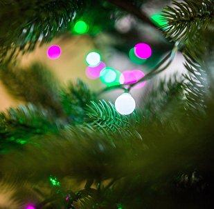 Гирлянды на елке, архивное фото
