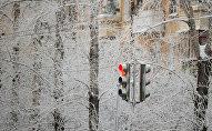Светофор на заснеженной улице, архивное фото