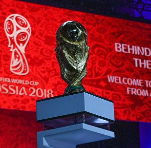 Подготовка к жеребьевке чемпионата мира по футболу 2018