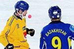 Хоккей с мячом. Чемпионат мира. Матч Швеция - Казахстан