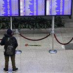Ситуация в аэропорту Домодедово