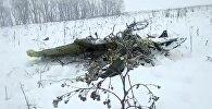 Часть самолета Ан-148 «Саратовские авиалинии Ан-148», разбившегося после взлета из московского аэропорта Домодедово