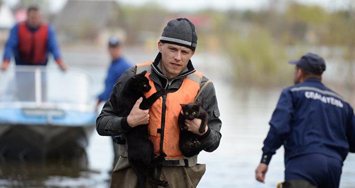 Спасатели во время паводка, архивное фото