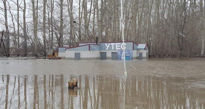 Талая вода в Шемонаихинском районе ВКО