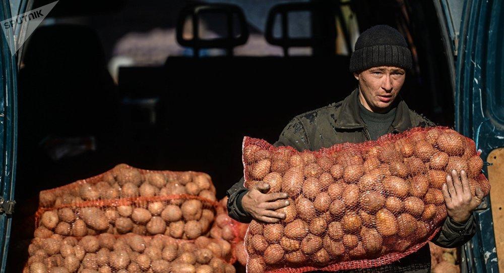 Мужчина несет мешок с картошкой