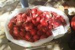 Продажа редиски на рынке в Шымкенте