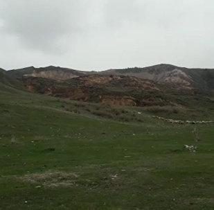 Гора движется – местные жители сняли на видео оползень в Алматинской области