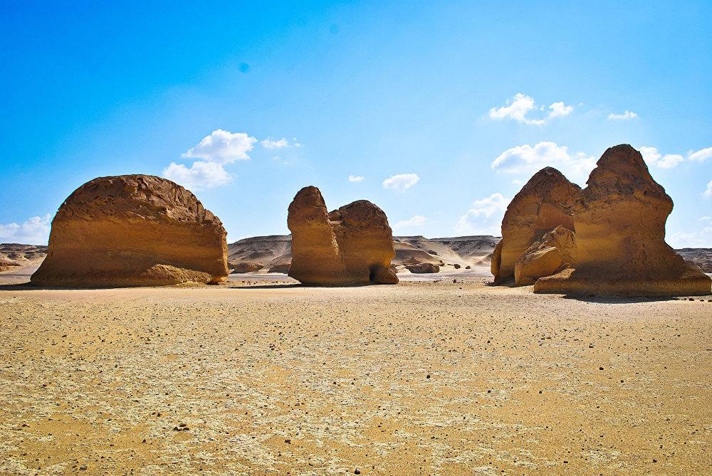 В Вади-аль-Хитан палеонтологи обнаружили много хорошо сохранившихся ископаемых останков древних китов.