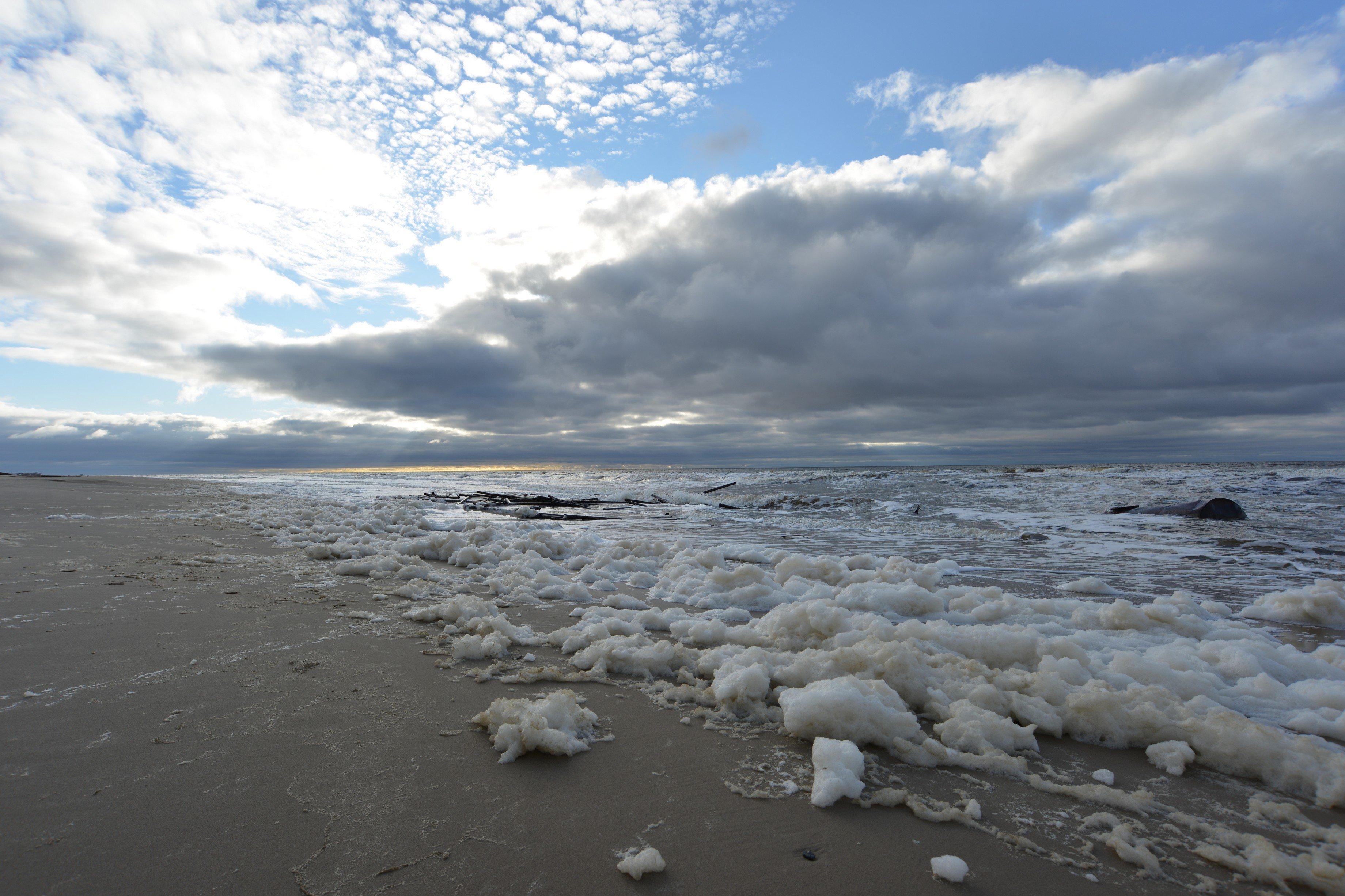 Волонтерам понадобилось пять лет, чтобы полностью очистить от отходов остров Белый