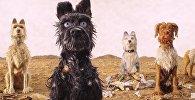 Кадр из мультфильма Остров собак