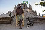 Бразилец Марцио Матолиас построил на пляже песчаный замок
