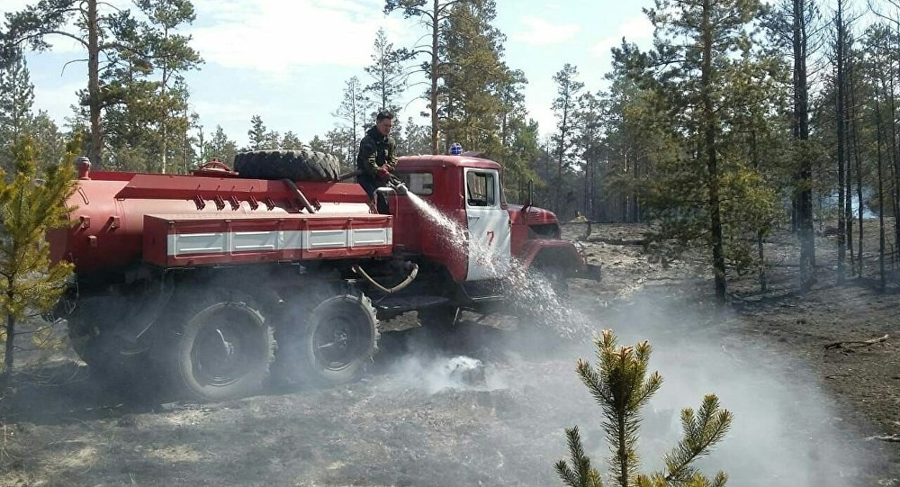 В Краснокардонском лесничестве ситуация по лесному пожару стабилизируется