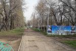Алматинцы пожаловались в администрацию президента и прокуратуру из-за приватизированного участка парка Южный