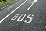 Спецполоса для автобусов Вus Lane, иллюстративное фото