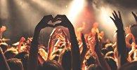 Фанаты на концерте, иллюстративное фото