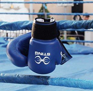 Боксшының қолғабы