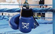 Боксерские перчатки